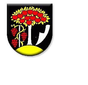 1. FC Černík