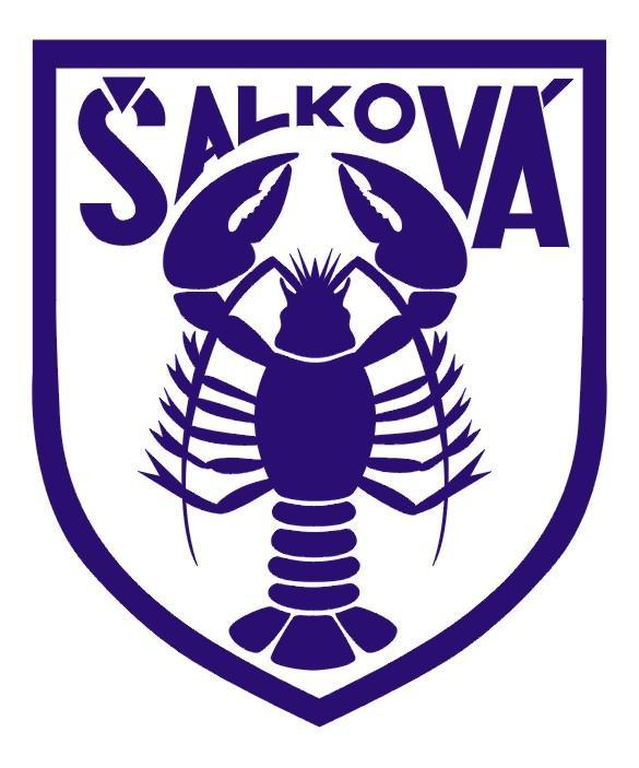 FK Šalková