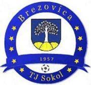 FK TJ Sokol Brezovica