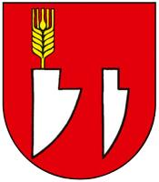 FK Zlatná na Ostrove