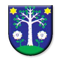 Futbalový klub Oravan Brezovica