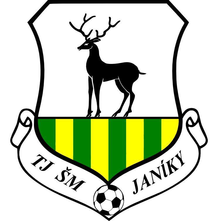 TJ ŠM Janíky